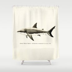 Carcharodon carcharias II ~ Great White Shark Illustration by Amber Marine Shower Curtain