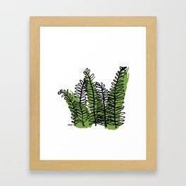 Serengeti Safari - Acacia Framed Art Print