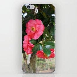 camellia flower iPhone Skin