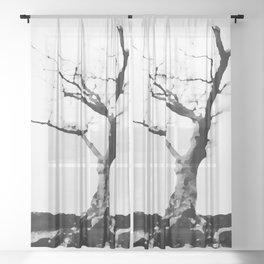 Mountain Tree Sheer Curtain