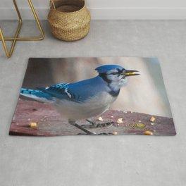 March Blue Jay Rug
