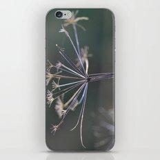 Cowslip iPhone & iPod Skin