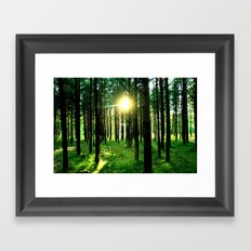 Secret Forest Framed Art Print