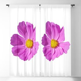 Pink Cosmos Flower Blackout Curtain