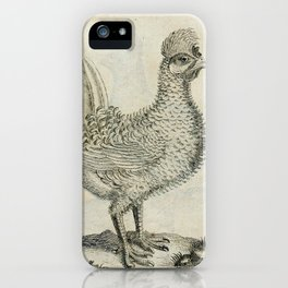 008 straubichte hahn (Ger)2 iPhone Case