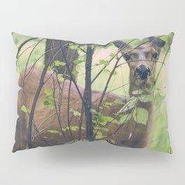 Peeking Pillow Sham