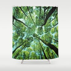 Looking up in Woods Shower Curtain