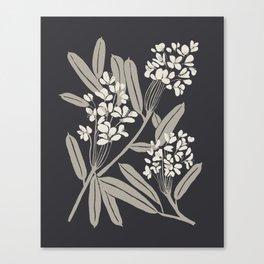 Boho Botanica Black Canvas Print