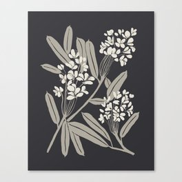 Boho Botanica Black Canvas Print