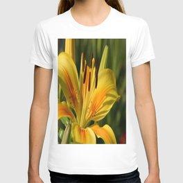 Beautiful Yellow Lily T-shirt