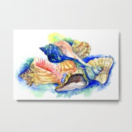Seashells, ocan beach seashell artwork Metal Print