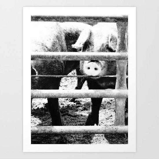 Pig Farm 2 Art Print