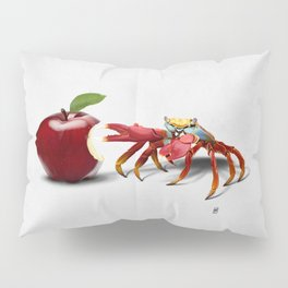 Core (Wordless) Pillow Sham