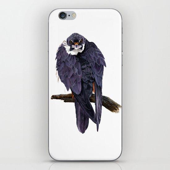 Hobby iPhone & iPod Skin