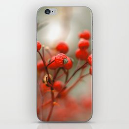 New York Nature II iPhone Skin