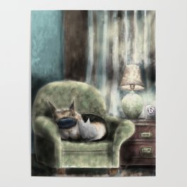 cat and pup together Poster