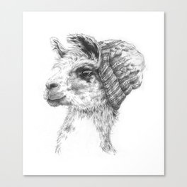 Wooly Llama Canvas Print