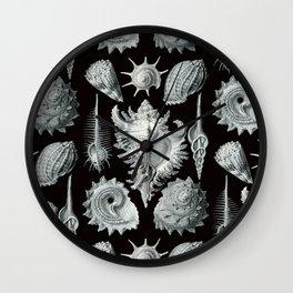 Ernst Haeckel - Prosobranchia Wall Clock