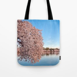 Washington DC Cherry Blossoms Tote Bag