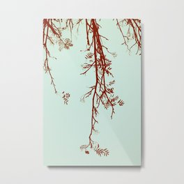 Delicate like breeze Metal Print