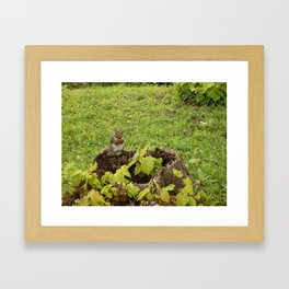 Red-Handed Framed Art Print