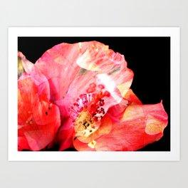 Double Exposed Flowers. Art Print
