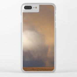 New Mexico Rainbow Clear iPhone Case