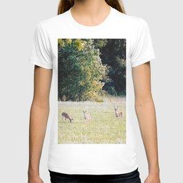 Whitetail Bucks T-shirt