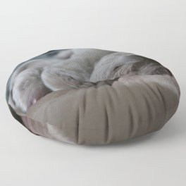 Cute puppy by Nathalie SPEHNER Floor Pillow