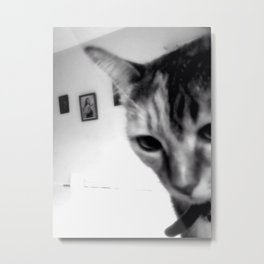 Cat with St Therese Metal Print