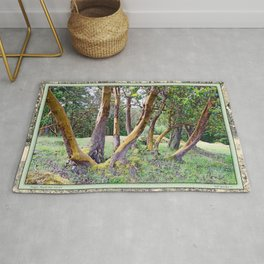 MAGIC MADRONA FOREST Rug