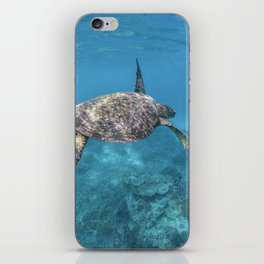 Turtle swimming through the reef iPhone Skin