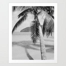 Maho Palm Art Print