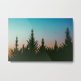 TREES - SUNSET - SUNRISE - SKY - COLOR - FOREST - PHOTOGRAPHY Metal Print