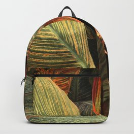Fine Art Spectaculaire Avant-Garde Rainbow-Striped Leaves Backpack