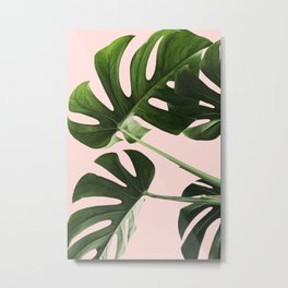 Monstera x Pink Metal Print