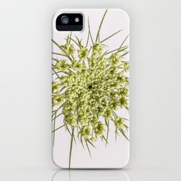 Queen Ann's Lace Flower iPhone Case