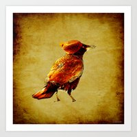 crow Art Prints featuring Crow by Ganech joe