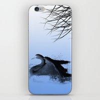 black swan iPhone & iPod Skins featuring Black swan  by Shalisa Photography