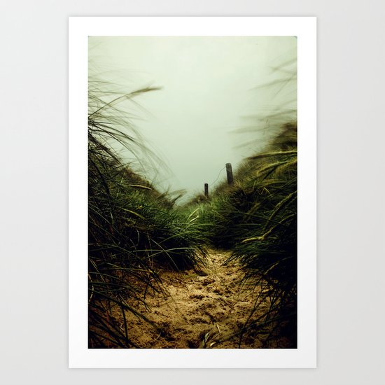 path through the dunes Art Print
