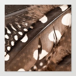 Beautiful Feathers On A Dark Brown Background #decor #buyart #society6 Canvas Print