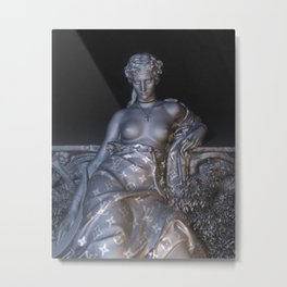 LV Metal Print