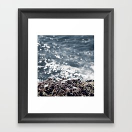 Ice plants on California coast Framed Art Print