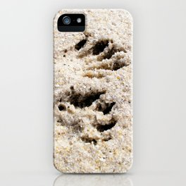 Watercolor Footprints, Racoon 01, Janes Island, Maryland iPhone Case