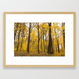 Fall Has Arrived Framed Art Print