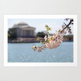 Sakura Matsuri Art Print