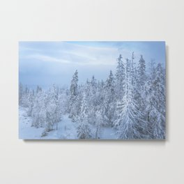 Winter forest in the Mountains Metal Print
