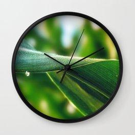 Close Up of Corn Leaf Wall Clock