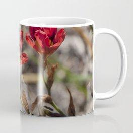 Sparaxis Coffee Mug