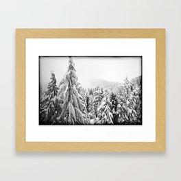 Snow Precious Framed Art Print